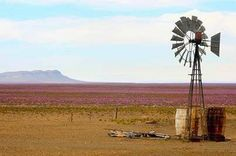 Windpomp & lande Water Tower, Windmills, Far Away, Funny People, Science Nature, Wind Turbine, South Africa, African, Journal Art