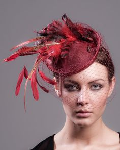 Red feather fascinator hat with real beetles  2f93a3df835f