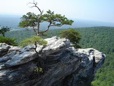 Hanging Rock near the Virginia border.  Find your ancestors on www.northcarolinapioneers.com