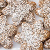 Powdered Sugar Gingerbread Cookies