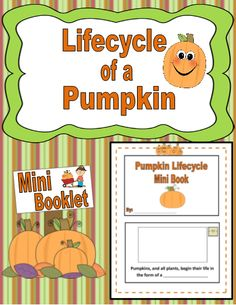 Have your students learn all about the Pumpkin Lifecycle by creating their won Mini Booklet in which they learn the definitions of the parts of the pumpkin, then complete the sentences and illustrate their words on each page!  Easy and Engaging!