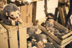 Febo Garden | Scopri gli addobbi #peluche #bukowsky