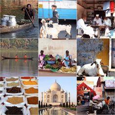 India Taj Mahal, India, Building, Travel, Goa India, Viajes, Buildings, Destinations, Traveling