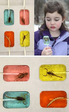 Hotlix is the original edible insect candy creator. For over 20 years they have been making people cringe with delight at their outrageous confections featuring real insects embedded in the candy!
