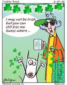 I may not be irish funny lol maxine humor st patricks day st pattys day st patrick's day