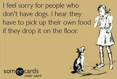huh? pick food up off the floor? you mean people have to do that?
