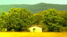 Beautiful Summer European Countryside 04 stylized - Stock Footage | by boscorelli - http://www.pond5.com/stock-footage/11477388/beautiful-summer-european-countryside-04-stylized.html?ref=boscorelli