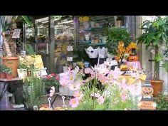 探して mitai お花屋さん  〜 フラワーショップ GardenRose 〜  Promotioned by CMmitai ( http://evpo.st/1xJP3AW) #動画 #動画制作 #動画検索 #Youtube