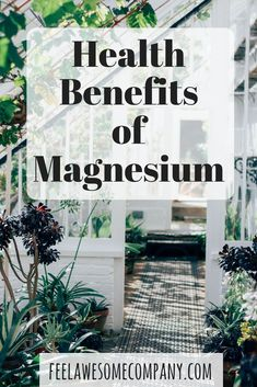 Magnesium supplements can give you all the magnesium that your body needs and much more, in order for it to function at a high level. We need magnesium in order to build stronger bones, and it helps to release energy from muscle storage. Liquid Magnesium, Types Of Magnesium, Magnesium Benefits, Magnesium Supplements, Weight Loss Supplements, Health Benefits, Brain Health, Gut Health, Food For Strong Bones