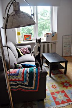 CuteCat from Cracow, arf :)   desiretoinspire.net - Monday's pets on furniture