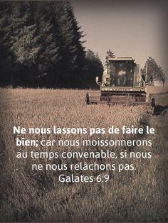 La Bible - Versets illustrées - Galates 6:9 - Ne nous lassons pas de faire le bien, car nous moissonnerons au moment convenable, si nous ne nous relâchons pas.