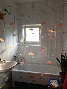 Transparent shower curtain. Spirella Goldfish orange. Ivy. Mother-in-law's tongue. Bathroom window.