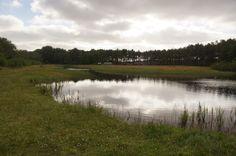 Lake on Terschelling