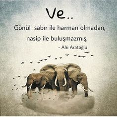 Nasip İle İlgili Resimli Sözler ~ Güzel Sözler Dont Love, Love You, Fate Destiny, Illustrated Words, Favorite Quotes, My Favorite Things, Meaningful Words, Islamic Quotes, Beautiful Words