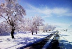 Hypnotic view of Ziarat , Pakistan <3