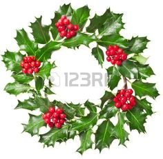 Christmas wreath of nature leaves and berries holly ilex plant isolated on white background Christmas Leaves, Christmas Plants, Christmas Themes, All Things Christmas, Christmas Wreaths, Merry Christmas, Christmas Drawing, December Daily, Christmas Inspiration