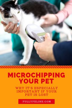 Why microchip?  Lear