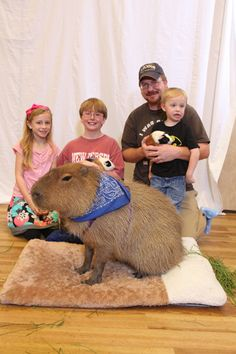 Family with pet portraiture...capybara    I've always told Lynn that I would love having one of these as a pet, but only if we had a yard and a pool for it.