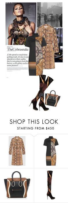 """""""SSSSSS!"""" by drigomes ❤ liked on Polyvore featuring THE COBRA SNAKE, Gucci, Etro, CÉLINE and Burberry"""