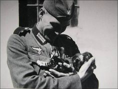 German WWII Soldier with kittens cats. The Kitten Paradox Chat Web, Sphinx Cat, Mean Cat, German Soldiers Ww2, Gatos Cats, Man Of War, Pusheen Cat, Military Dogs, Vintage Cat