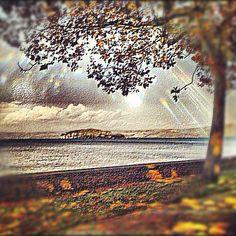 "@ilaria_agostini's photo: ""Bolsena Lake from Marta, Viterbo, Italy"""