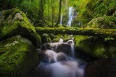 Currumbin Surge  Landscapes photo by everlookphotography http://rarme.com/?F9gZi