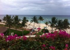 When it comes to Cancun, many think of it as tourist city, but did you know that the city originated as a Mayan village? This week, Peter Greenberg Worldwide heads south of the border to the Villa Del Palmar Cancun Beach Resort & Spa. Listen to his podcast to find out about Mayan history and culture in the area, the local's guide to escaping the crowds and how the destination has changed over the past 20 years