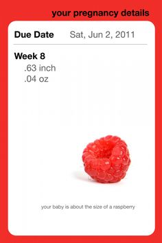 Pregnancy App About the Size of rasberry week 8 #pregnant