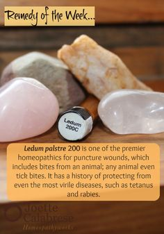 The premier remedy for puncture wounds. ~joettecalabrese.com