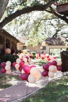 blush and marsala balloons lining a walkway for a party or a lively wedding