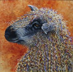 Lovely colourful sheep