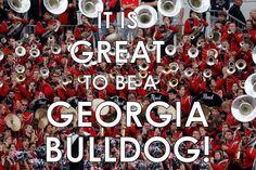 It's Great To Be A Georgia Bulldog!