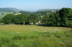 Howgill Farm Caravan Holiday, Barden, near Bolton Abbey, near Skipton, Yorkshire Dales.  Pet friendly.