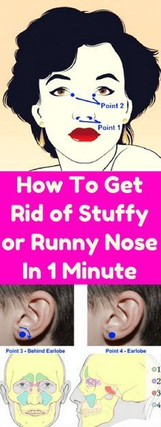 It's not much fun to have a blocked nose. You can't breathe properly and sleeping can become a painful experience and the only thing you can think of is how to get rid of your stuffy nose quickly. A runny nose can be just as annoying, even embarrassing, especially when you're surrounded by people and …