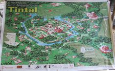 Mirador Basin Project The Cradle of Maya Civilization