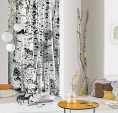 collection Sherwood - panoramique intissé - référence bouleau 67939000 - facile à poser