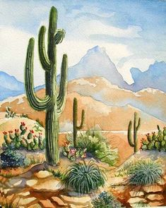 Old Saguaro - Southwest Art Print - Saguaro in Arizona Desert Landscape with Prickly Pear Barbara Spencer art garden indoor plants Cactus Painting, Watercolor Cactus, Cactus Art, Watercolor Landscape, Watercolor Paintings, Cactus Plants, Indoor Cactus, Cactus Decor, Landscape Drawings