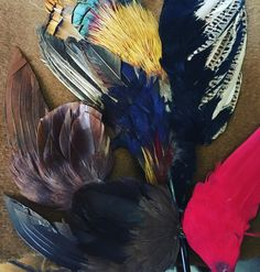 Vintage feather trims ready for Autumn Winter collections #madhatter #millinery #millinerycouture #millinerybling #wendylouise #wendylouiseaustralia #vintagestyle #vintageinspired #hat #hatter #handmadeaccessory #birdsofafeather #feathers #fascinator #fotf #racingfashionaustralia #lovemyjob #bellefolie @belle.folie.designs