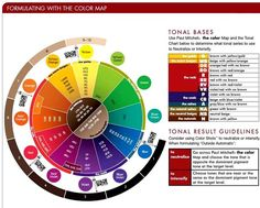 Paul Mitchell The Color Tonal Bases