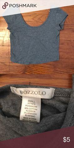 Brand new grey crop top Brand new never worn grey crop top Bozzolo Tops Crop Tops