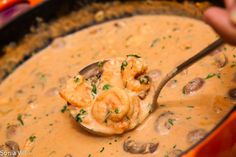 STROGONOFE DE CAMARÃO ingredientes; 500g de camarão médio 1 cebola ralada 1 copo de 200 ml de molho de tomate 1 lata de creme de leite fresco 2 colheres (sopa) de mostarda 1 colher (sopa) de manteiga 2 alhos picados 1/4 de xícara (chá) de conhaque Sal e pimenta do reino a gosto Modo de…