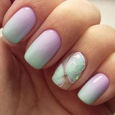 Butterfly Ombre
