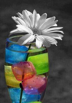 La vida es color,el color es vida! Como sea,pon en tu día a día,los diseños de las #holos y mejora tu calidad vibracional terapéutica. lluïsa y rosó www.holoplace.net/info
