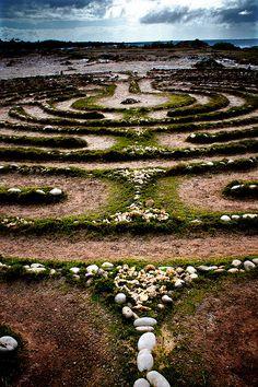 Hawaiian prayer maze (Maui)
