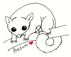possum possums crafts coloring pages-#19