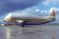 Stratocruiser SuperGuppy. En los años 60, el 377 Stratocruiser fue modificado para llevar parte del cohete Saturno V de su planta de montaje en California a Florida. (Créditos a su Autor)