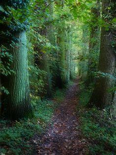 allthingseurope: Usedom, Germany (by Reinhard Bellmann)