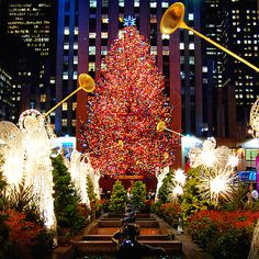 Christmas in New York: A survival guide for a NY vacation - New Decoration ideas New Christmas Lights, Merry Christmas, Christmas Vacation, Christmas Time, Christmas Decorations, Christmas Destinations, Christmas Travel, Outdoor Christmas, Xmas Lights