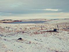 Pani Dorcia w Islandii: Islandzka zima w dolinie rzeki Thjorsa