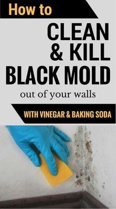How To Clean & Kill Mold Off Your Walls With Vinegar And Baking Soda - CleaningInstructor.com